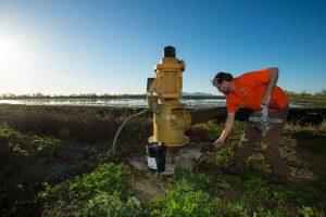 Man inspecting irrigation lines